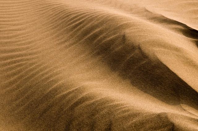 砂丘の風紋が描く不思議な模様