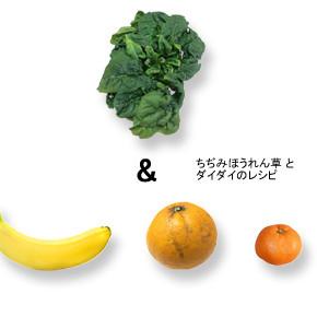 グリーンスムージー ー ちぢみほうれん草&ダイダイのレシピ