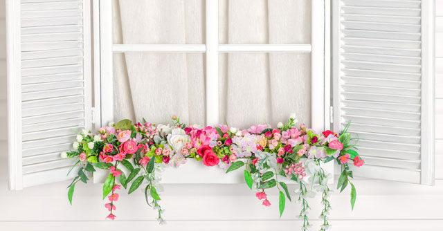 flower-on-windowsill