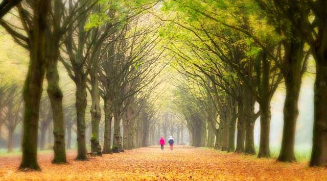 autumn-of-our-life
