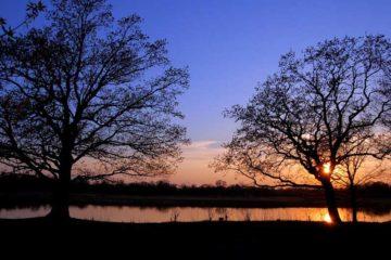 sun-rise-sun-set